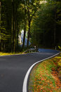 Autumn landscape with road and beautiful  trees Royalty Free Stock Photo