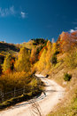 Autumn landscape in Romania Stock Images