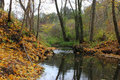 Autumn landscape stream in the forest Stock Photo