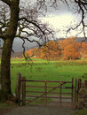 Autumn in Langdale Stock Image