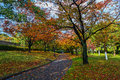 Autumn laves at hiroshima central park in japan Stock Photo