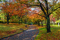 Autumn laves at hiroshima central park in japan chuo Stock Photography