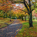 Autumn laves at hiroshima central park in japan chuo koen Stock Images