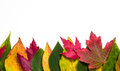 Autumn leaf border Stock Photography