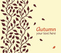 Autumn leaf card Stock Images