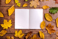 Autumn leaf composition, notebook. Studio shot, wooden back Royalty Free Stock Photo