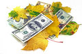 Autumn leaf fall of dollars on a white background Stock Images