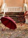 Autumn leaf fall. Red and yellow leaves on the destroyed old stone steps burgundy marsala color umbrella Royalty Free Stock Photo