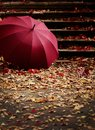 Autumn leaf fall. Red and yellow leaves on the destroyed old stone steps burgundy (marsala color) umbrella. Royalty Free Stock Photo