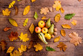 Autumn leaf and fruit composition. Studio shot, wooden backgroun Royalty Free Stock Photo