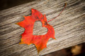Autumn leaf heart Stock Photography