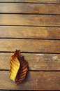 Autumn leaf over wooden background Stock Images
