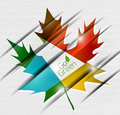 Autumn leaf on paper abstract background vector Stock Image