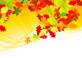 Autumn leaf scroll Royalty Free Stock Images
