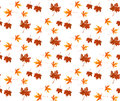 Autumn leaf seamless pattern. Royalty Free Stock Photo
