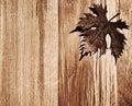Autumn leaf wooden border Royalty Free Stock Photo