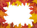Autumn leafs frame (clipping path isolation) Stock Image