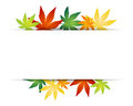 Autumn leafs vector illustration of border Stock Photo