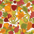 Autumn leaves background seamless Stock Photos