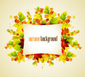 Autumn leaves background with space for text Royalty Free Stock Photos