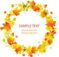 Autumn leaves background. vector banner Royalty Free Stock Images