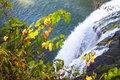 Autumn leaves on the background of a waterfall Royalty Free Stock Photo