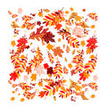 Autumn leaves background for your design Stock Photos