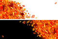Autumn leaves banners for your design Royalty Free Stock Image
