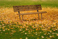 Autumn leaves and bench Stock Image