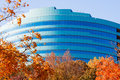 Autumn Leaves and Blue Curved Office Royalty Free Stock Photo