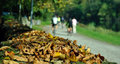 Autumn leaves with blur people Stock Photo