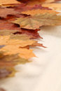 Autumn leaves border Royalty Free Stock Photography