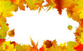 Autumn leaves border for copy space. Royalty Free Stock Photos