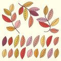 Autumn leaves and branches set. Stock Images