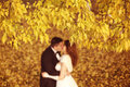 Autumn leaves with bride and groom as silhouettes Royalty Free Stock Photo