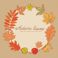Autumn leaves colorful greeting card on polka dot background Royalty Free Stock Photo