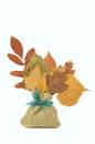 Autumn Leaves composition Royalty Free Stock Photo