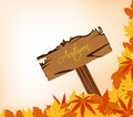 Autumn leaves concept with sign post Royalty Free Stock Images