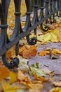 Autumn leaves with a fence Stock Image