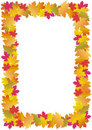 Autumn leaves frame (maple) Stock Photography