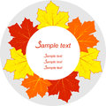 Autumn leaves Frame. Royalty Free Stock Photo