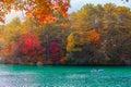 Autumn Leaves In Goshikinuma L...