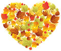 Autumn leaves in the heart frame Royalty Free Stock Images