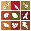 Autumn leaves icon red yellow and green leaves of forest trees are used as buttons for web design Royalty Free Stock Photos