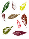 Autumn Leaves II Stock Photo