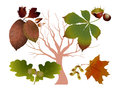 Autumn leaves it is illustration of Stock Photography