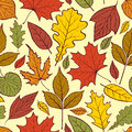 Autumn leaves illustration of seamless pattern with Royalty Free Stock Photo
