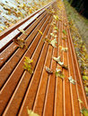 Autumn leaves on long bench Stock Images