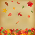 Autumn Leaves On Old Paper. Vector Stock Image