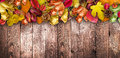 Autumn Leaves over a Natural Dark Wooden background. Old dirty wood tables or parquet
